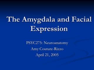 The Amygdala - Wesleyan University,