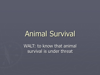 Animal Survival - Primary Resources,