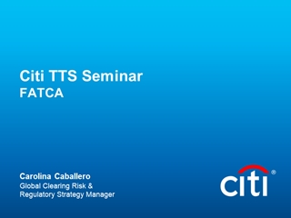 Citi Corporate Style - Citibank Digital slide making software
