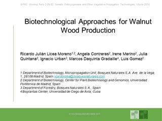 Diapositiva 1 - Bosques Naturales,