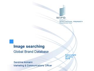 Image searching Global Brand Database, Cyberworld 20 June 2018, Sandrine Ammann Marketing & Communications Officer,