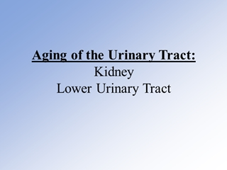 Aging of the Urinary Tract Aging of the Prostate,