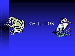 darwin evolution ppt,Online HTML PPT displaying platform