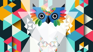 Owl Report,Online HTML PPT displaying platform