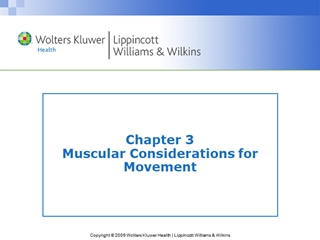 Muscular Considerations for Movement Digital slide making software