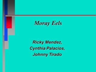 Moray Eels - University of New Mexico,